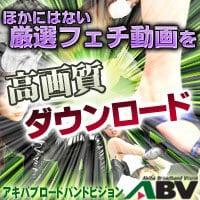 アキバ ブロードバンド ビジョン【Akiba Broadband Vision】