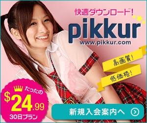 ピッカー【Pikkur/pikkuru】